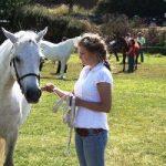 Ballyconneely Pony Show