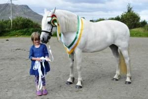 Maam Cross Connemara Pony Show