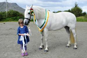 Maam Cross Connemara Pony Show