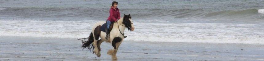 Cleggan Beach Riding Centre
