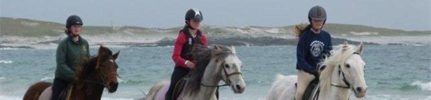 The Point Pony Trekking & Horse Riding Centre