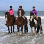 Cleggan Beach Riding Centre