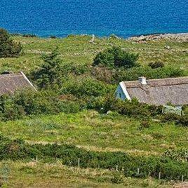 Gurteen Thatched Cottages