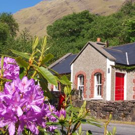 Delphi Holiday Cottages