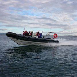 Connemara Sea Safaris