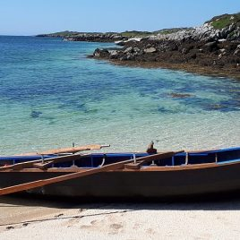 Black Boats